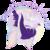 :iconet-folium: