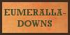 :iconeumeralla-downs: