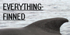 :iconeverything-finned: