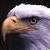:iconevil-eagle: