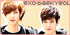 :iconexo-baekyeol: