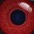 :iconexplodingbonbons: