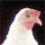 :iconextinction-yamato01: