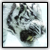 :iconf4pple: