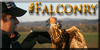 :iconfalconry: