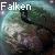 :iconfalken41: