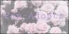 :iconfan-adopts: