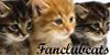 :iconfanclubcats: