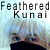 :iconfeathered-kunai: