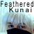 :iconfeathered-kunai: