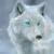 :iconfelixwolf114: