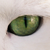 :iconferal-cats: