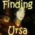:iconfinding-ursa: