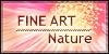 :iconfine-art-nature:
