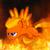 :iconfireflash260: