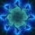 :iconflockling: