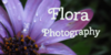:iconflora-photography: