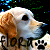 :iconflorated: