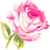 :iconflower-delivery: