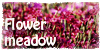 :iconflower-meadow: