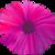 :iconflowerade: