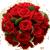 :iconflowerplz2: