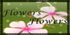 :iconflowers-flowers: