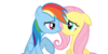 :iconflutter-dash-fanclub: