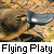 :iconflying-platy:
