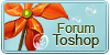 :iconforumtoshop: