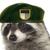 :iconfox4848: