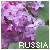 :iconfromrussia-withlove: