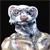 :iconfunky-ferret: