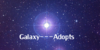 :icongalaxy---adopts: