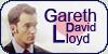 :icongareth-david-lloyd: