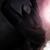 :icongildorwolf: