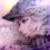 :icongolden-angel-dragon: