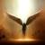 :icongolden-angel101: