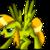 :icongoldenwing1: