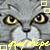 :icongraystripe4653: