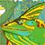 :icongreendragon22: