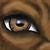 :iconh0wlingshewolf: