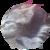 :iconhairball680: