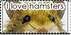 :iconhamster-club: