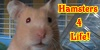 :iconhamsters4life: