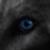 :iconhealedwolf: