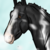 :iconhiddenvalleystables: