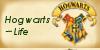 :iconhogwarts-life:
