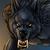 :iconholiday-snow-wolf: