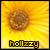 :iconhollzzy: